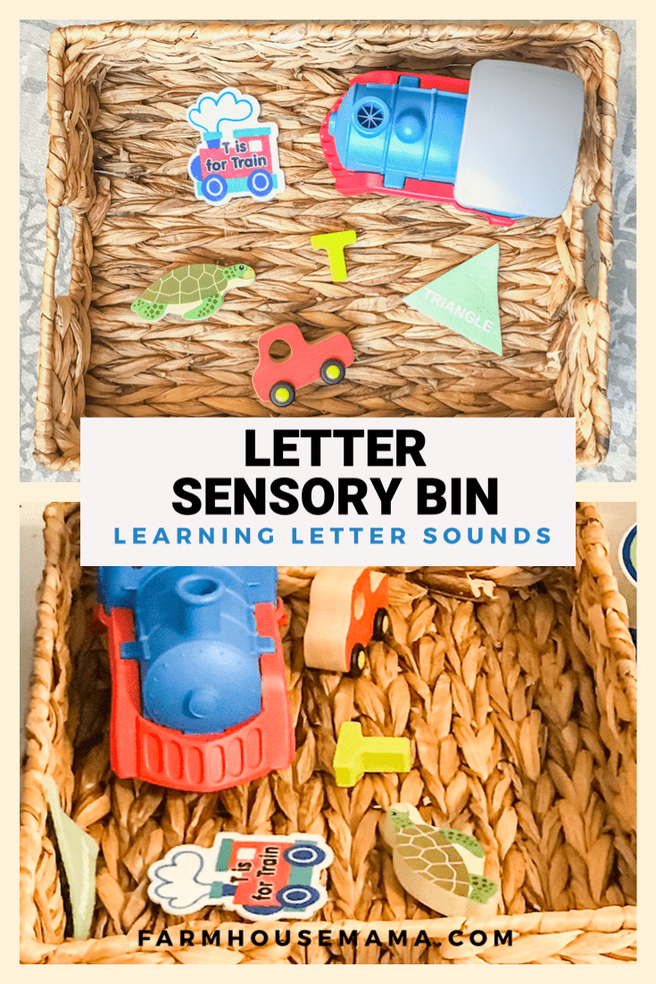 Letter Bin Sensory Bin Alphabet Sensory Play Letter Recognition Letter Sounds