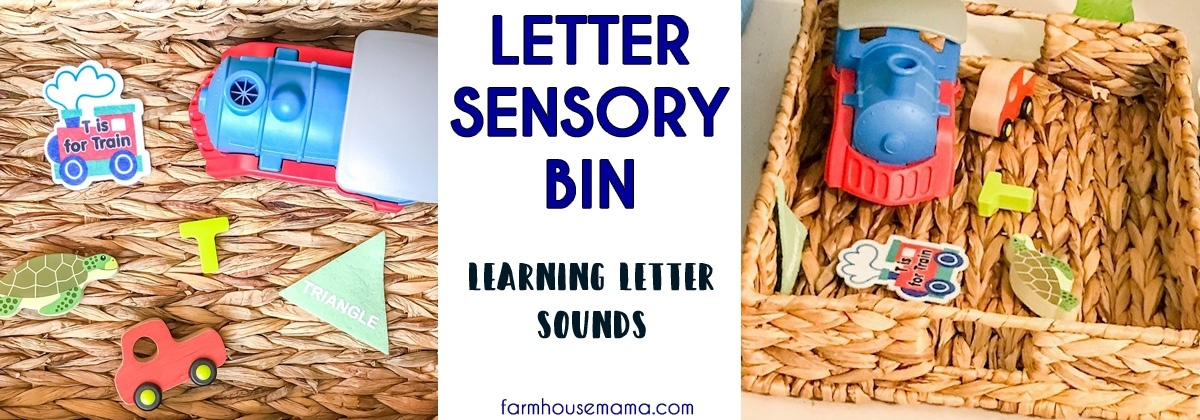 LETTER SENSORY BIN LETTER RECOGNITION LETTER SOUNDS LEARNING LETTERS
